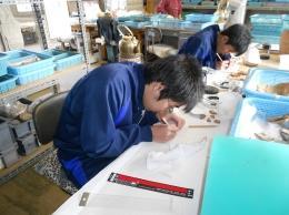 鶴ヶ島市教育委員会(発掘作業)
